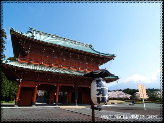 大石寺 (富士宮)---富士宮市観光...