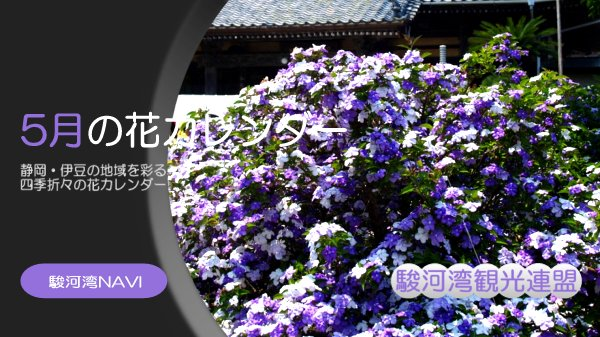 静岡の5月の花カレンダー