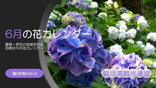 [印刷可能!] 6がつの花