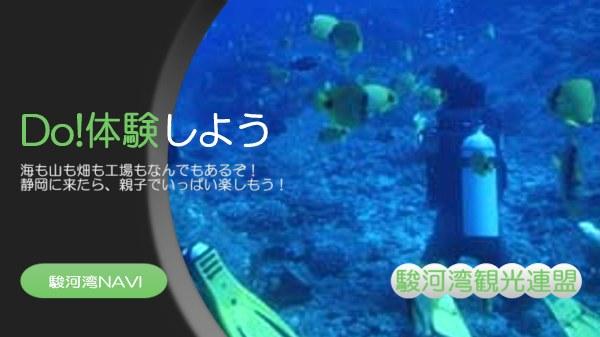 静岡・伊豆でダイビング体験