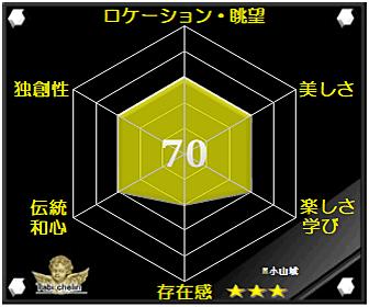 小山城の評価グラフです